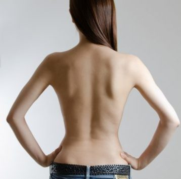 このイメージ画像は、このサイト記事「おすすめ『筋トレ 女子 背中 まとめ』 ネットで話題 YouTube無料動画ご紹介!」のアイキャッチ画像として利用しています。